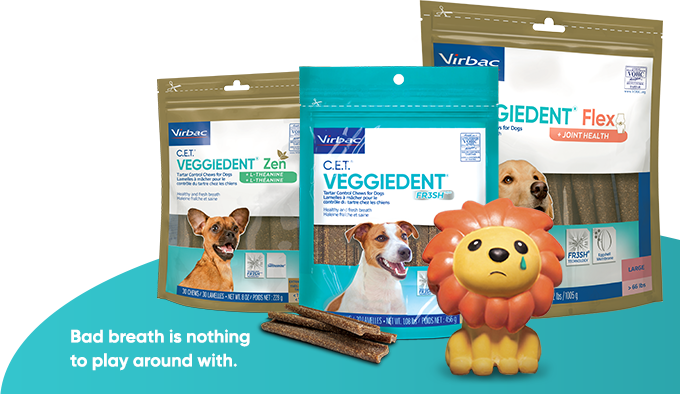 photo of all 3 varieties of C.E.T.® VEGGIEDENT® Chews for Dogs, with a sad-looking lion toy in front of them. Text says: Bad breath is nothing to play around with.
